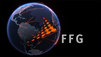 FFG Forum 2010